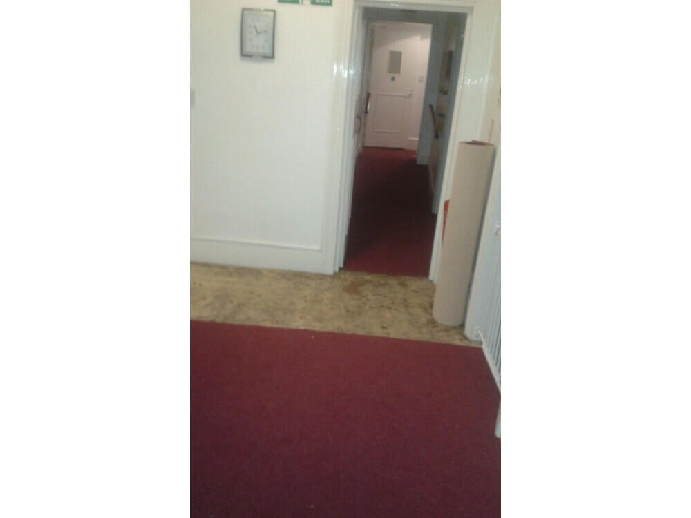 Carpet Installed - St Leonards-on-Sea 2